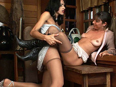 Shemale tube porn videos
